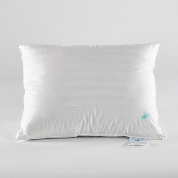 Sale of quality beds due to. stock discharge